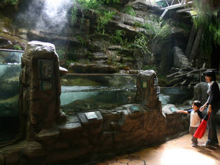 Oklahoma Aquarium © woodleywonderworks